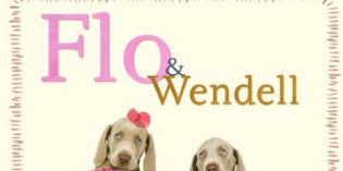 Book: Meet Flo & Wendell in William Wegman's new children's book