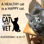 Of Fat Cats and Teeth: A National Take Your Cat to the Vet Day Story #Cat2VetDay