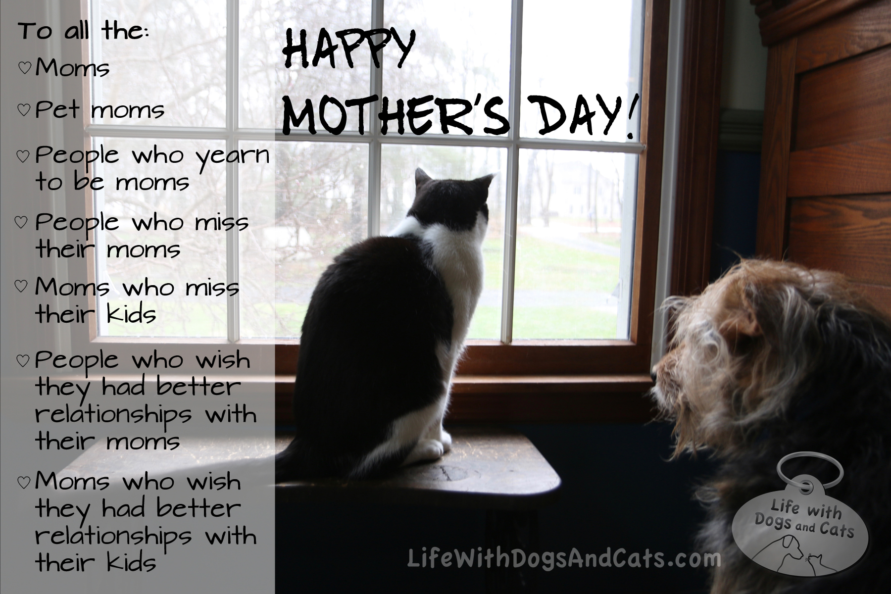 Happy Mother's Day to... - Life with Dogs and Cats : Life ...
