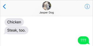 Text From Dog: In The Air
