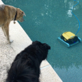 Jasper and Lilah investigate the robot, but determine it's harmless.