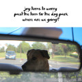 Haiku by dog: joy turns to worry / past the turn to the dog park / where are we going?
