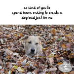 Haiku by Dog: Kind