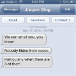 Text from Dog: Everybody nose
