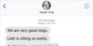 Text From Dog: Good Dogs