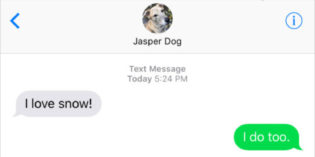 Text from Dog: He nose!