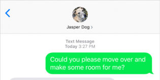 Text from Dog: Old dog, new tricks