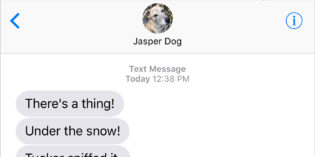 Text From Dog: Scent of Adventure