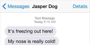 Text from Dog: How embarrassing!