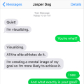 Text from Dog: Visualizing the goal