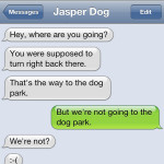 Text from Dog: Wrong way!