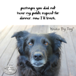 Haiku by Dog: Polite