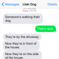 Text from Dog: Someone's walking their dog
