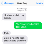 Text from Dog: Maintaining dignity