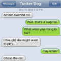 Text from dog: The cat swatted me. Text from me: What did you do to her? Text from dog: I thought she might want to play Chase the Cat.