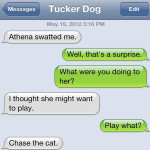 Text from Dog: Playing games