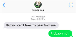 Text from Dog: Bear With Me