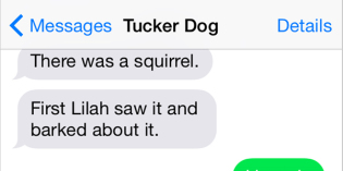 Text from Dog: There was a squirrel