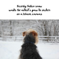 Haiku by dog: freshly fallen snow / waits for artist's paw to sketch / on a blank canvas