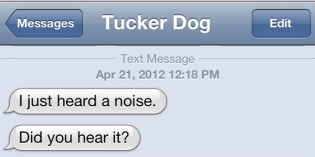 Text from dog: Tucker hears a noise