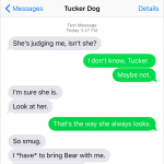 Text from Dog: Judge not