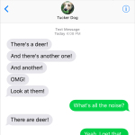 Text from Dog: OMG! Deer!