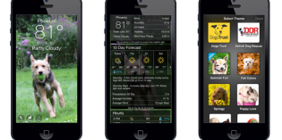 Pet Technology: Whether You Like Dogs or Cats, There's a Weather App for You