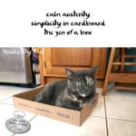 Haiku by Cat: Zen